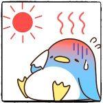熱中症 寒気や鳥肌が出たらかなり危ない?万一を考えて知っておくべきことがある!